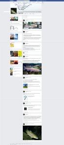 Fishandgame Timeline